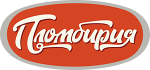 Логотип без фона 300
