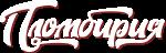 Логотип просто белые буквы